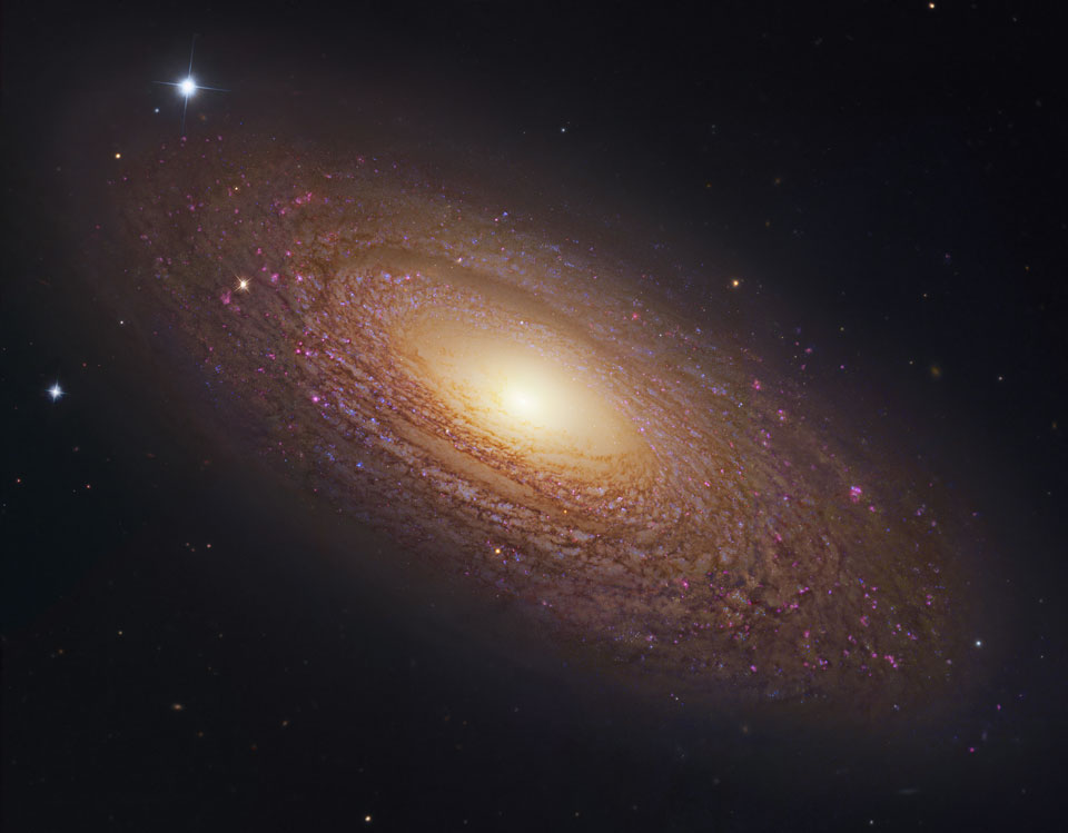 La massive et proche galaxie spirale NGC 2841