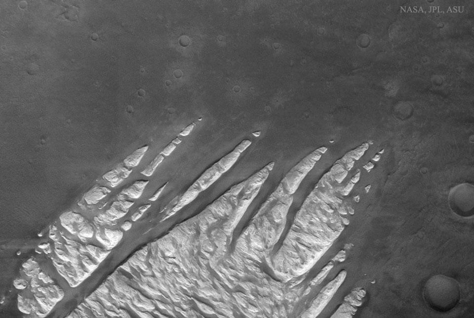 Patte blanche sur Mars