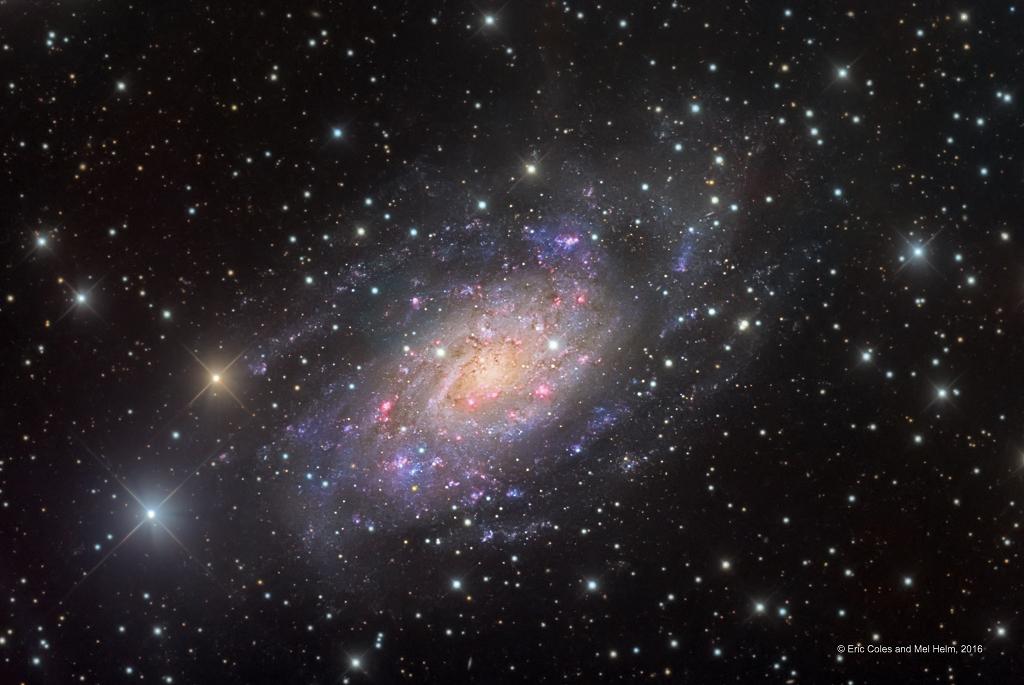 NGC 2403 dans la Girafe