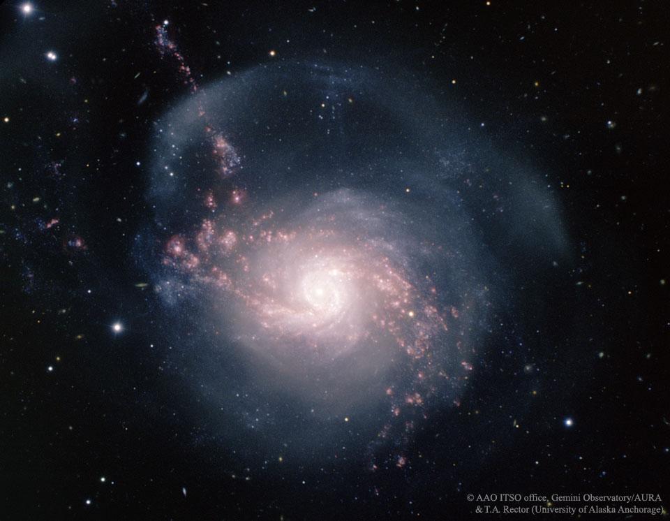 NGC 3310, galaxie à sursauts de formation d\'étoiles