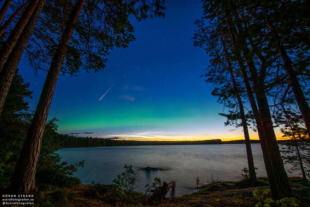 Perséide suédoise à l\'aurore noctulescente