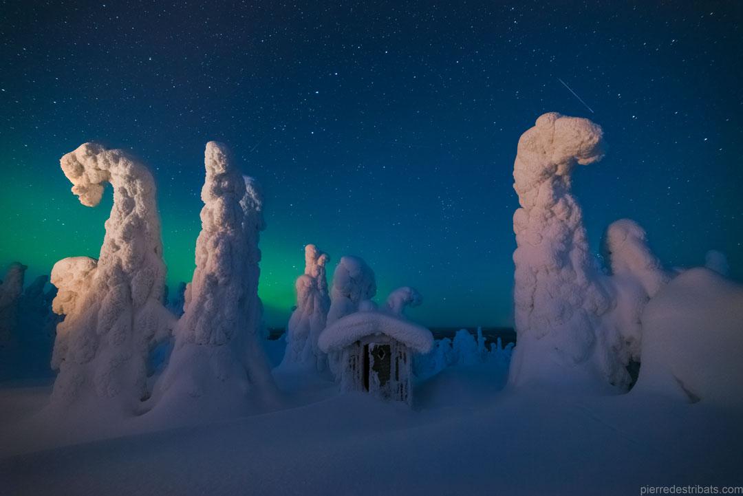 Sentinelles du ciel boréal