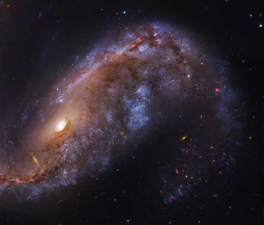 NGC 2442, crochet galactique
