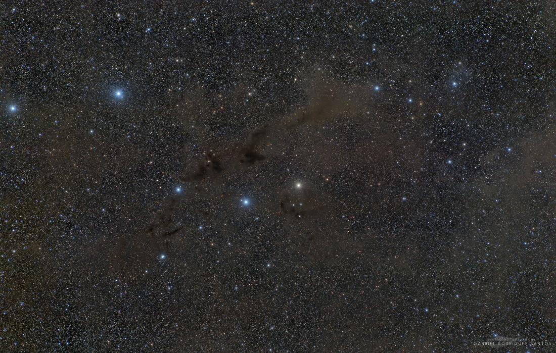 Barnard 228 : la nébuleuse du Loup Noir dans la constellation du Loup
