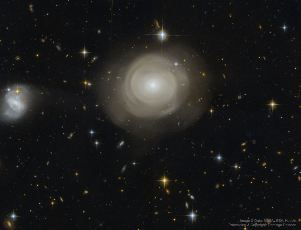 Coquilles d\'étoiles dans la galaxie elliptique PGC 42871