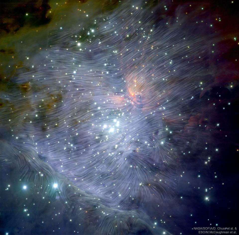 Champs magnétiques d\'Orion