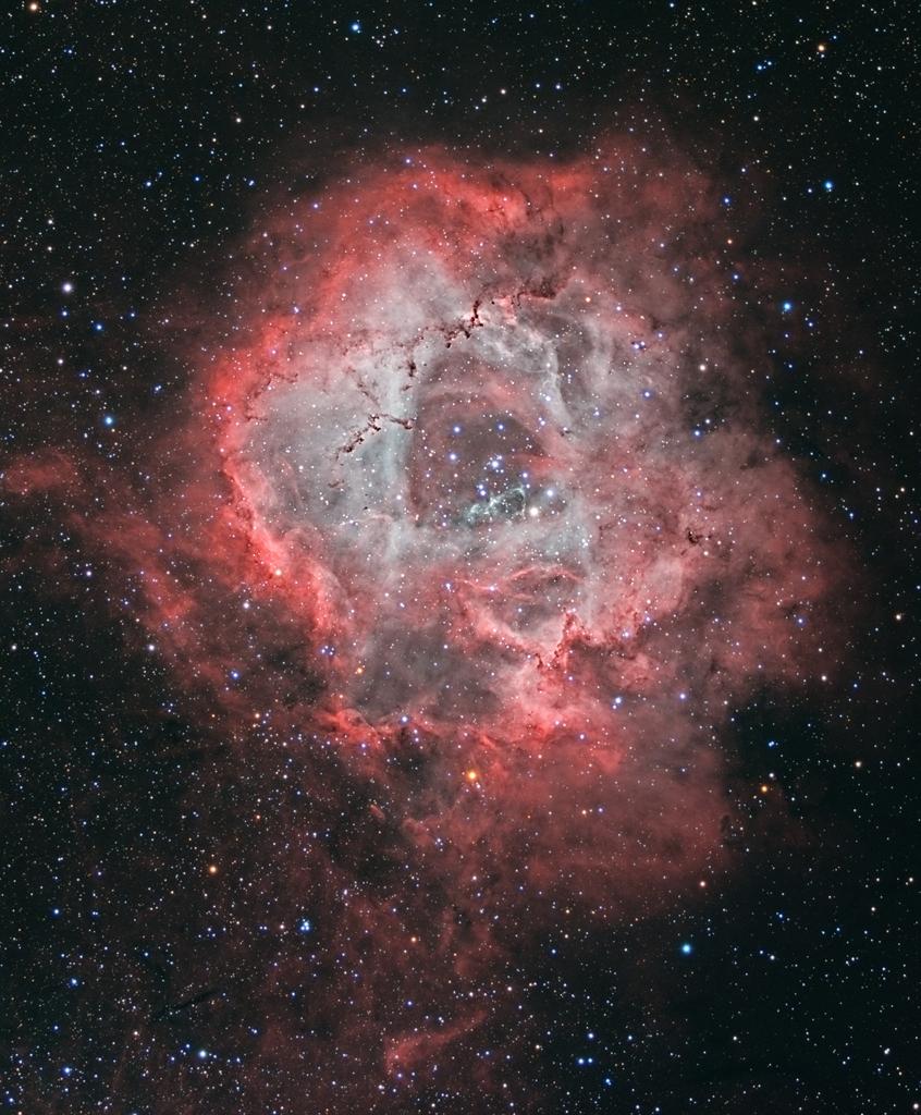 Une rose cosmique, la nébuleuse de la Rosette dans la constellation de la Licorne