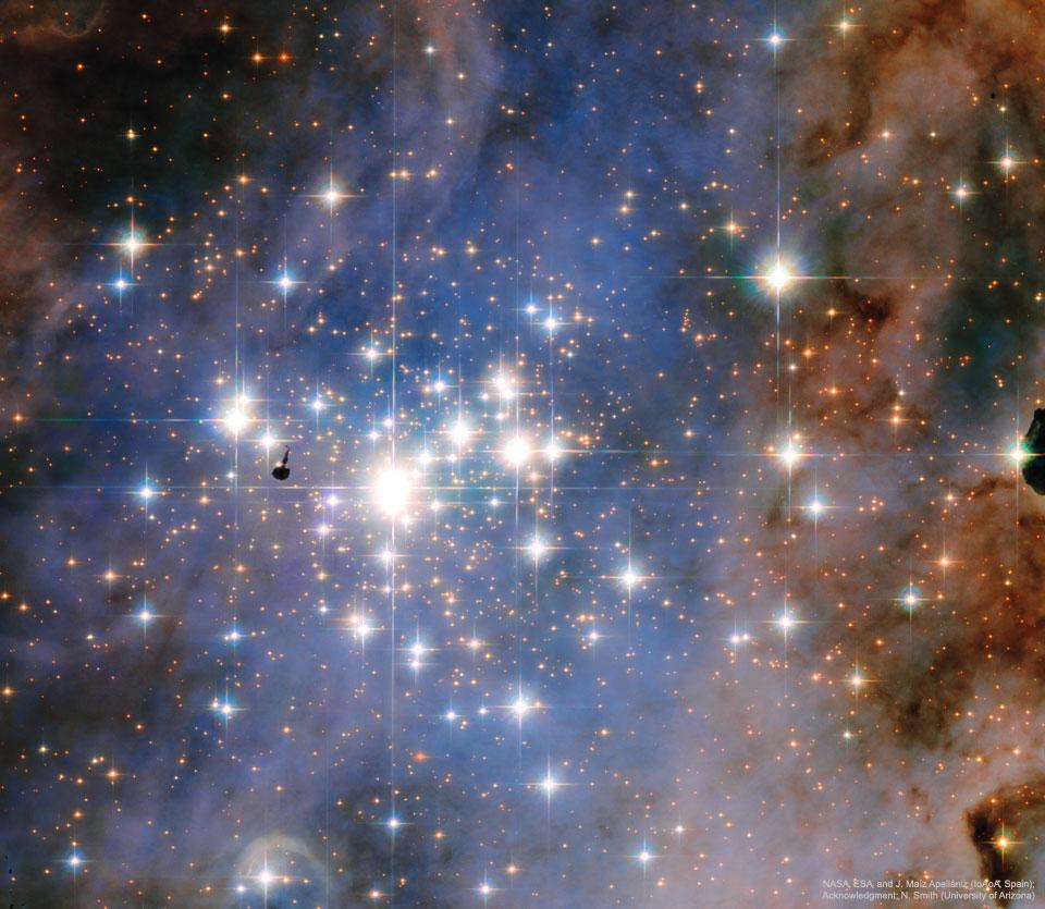 Jeunes étoiles de Trumpler 14 vues par Hubble