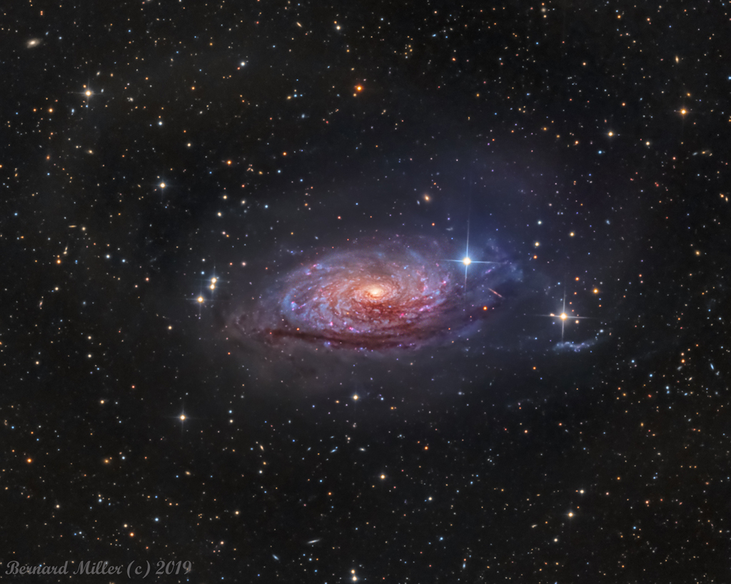 Messier 63, la galaxie du Tournesol