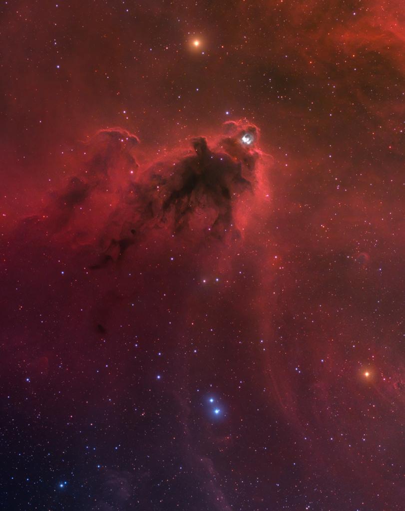 LDN 1622, la nébuleuse sombre d\'Orion