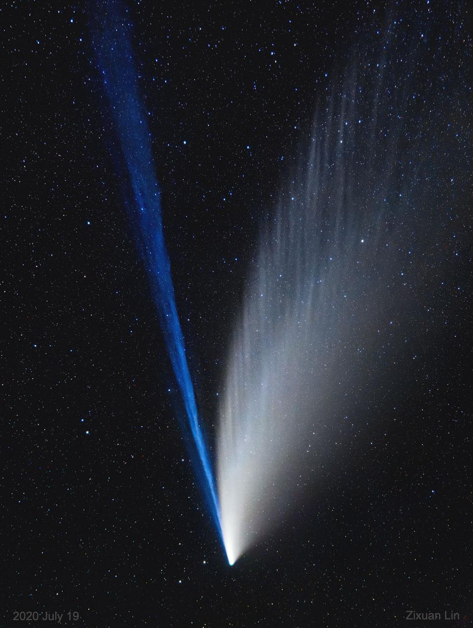 Les structures des queues de la comète NEOWISE