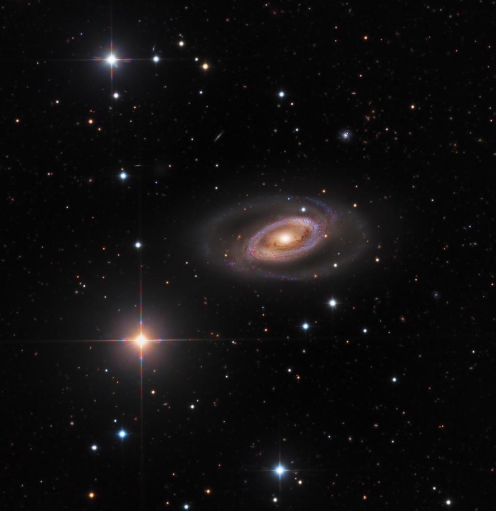 La galaxie spirale NGC 1350