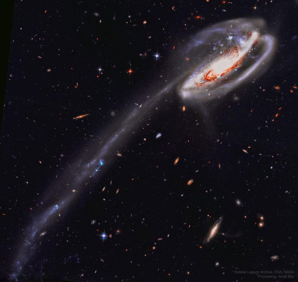 La galaxie du Têtard vue par Hubble
